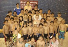 海豚游泳培訓中心夏季班和密集班全面開課