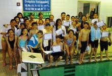 海豚游泳培訓中心 夏季班/密集班開課